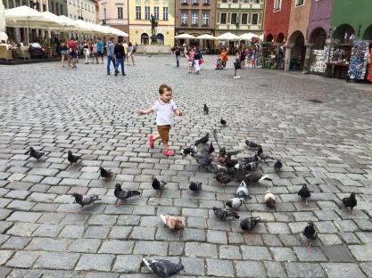 i will get you birdie!